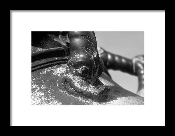 Cannon Framed Print featuring the photograph Cannon Detail by David Lee Thompson