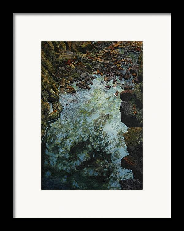 Creek Framed Print featuring the painting Canyon Study by Craig Gallaway