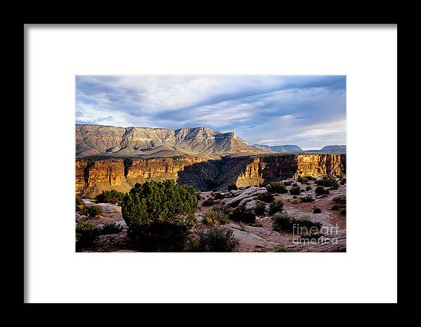 Toroweap Framed Print featuring the photograph Canyon Walls At Toroweap by Kathy McClure