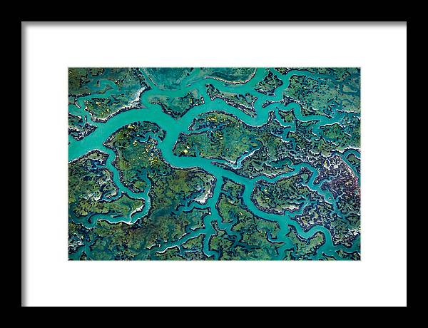 California Framed Print featuring the photograph Capillaries by Thorsten Scheuermann