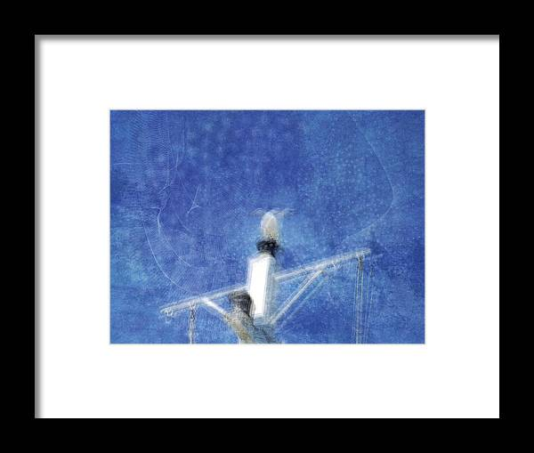 Blue Framed Print featuring the photograph Capt'n Jack by Brut carniollus