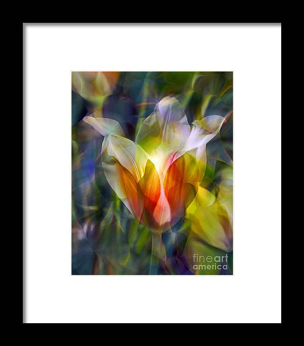 Floral Framed Print featuring the photograph Capturing The Sun by Chuck Brittenham
