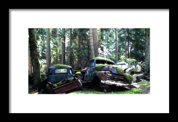 Vintage Cars Framed Print featuring the photograph Car Lot In The Forest by Diane Smith