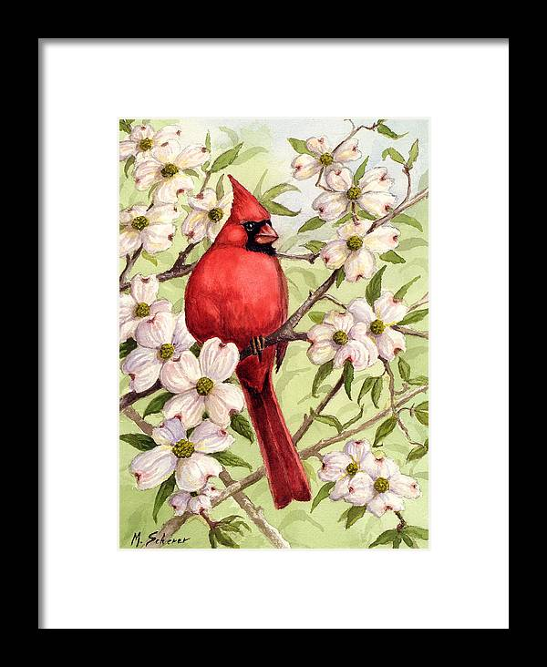 Wildlife Watercolor Framed Print featuring the painting Cardinal In Dogwood by Michael Scherer