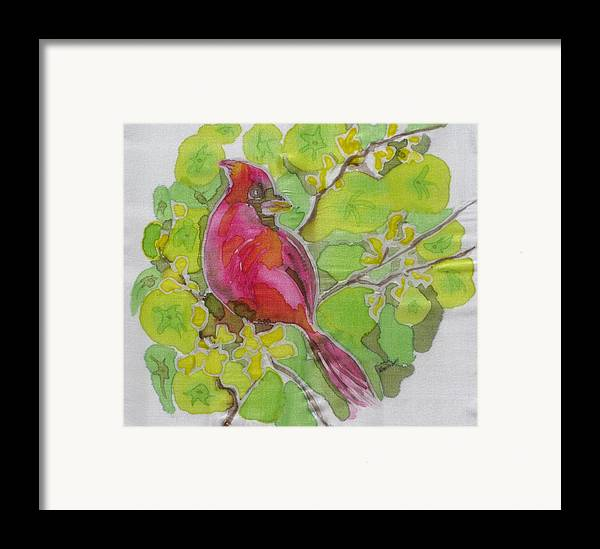 Bird Framed Print featuring the painting Cardinal In Palo Verde by Kathy Mitchell