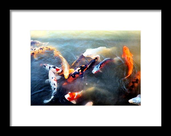 Fish Framed Print featuring the photograph Carp Ballet by Ellen Lerner ODonnell