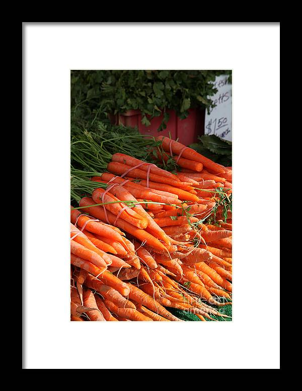 Stilllife Framed Print featuring the photograph Carrot Bounty by Portraits By NC