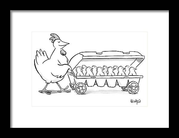 Hen Framed Print featuring the drawing Carton of Chicks by Robert Leighton
