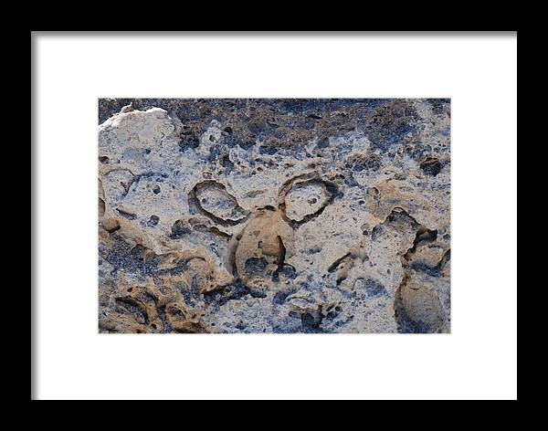 Ocean Framed Print featuring the photograph Carved Catface by Rob Hans