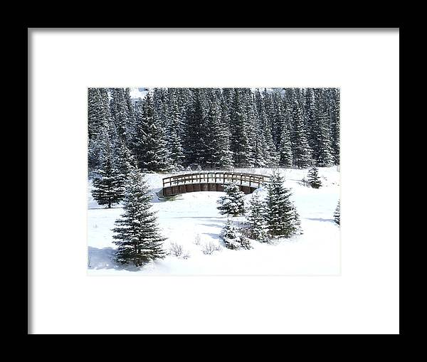 Winter Framed Print featuring the photograph Cascade Christmas by Tiffany Vest
