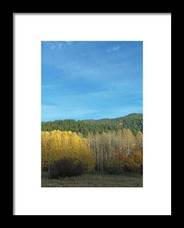 Fall Framed Print featuring the photograph Cascade Fall by Gene Ritchhart