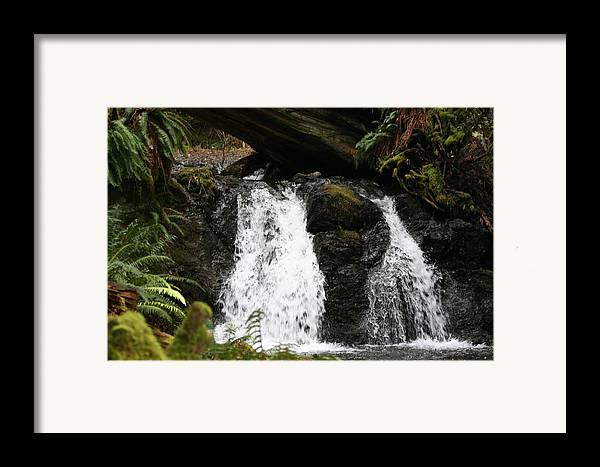 Waterfall Framed Print featuring the photograph Cascade Waterfalls Wf1003 by Mary Gaines