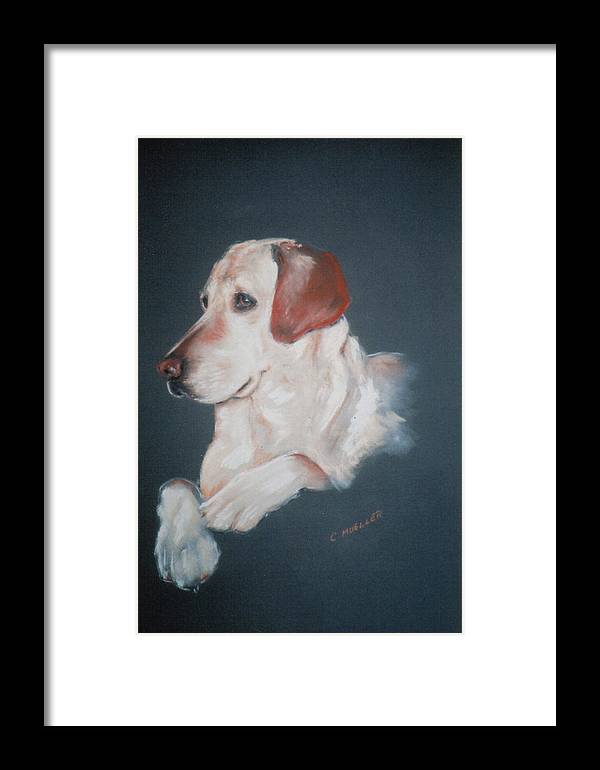 Dog Framed Print featuring the painting Casey by Carol Mueller