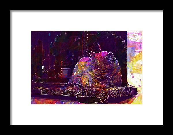 Cat Framed Print featuring the digital art Cat Feline Window Windowsill Pet by PixBreak Art