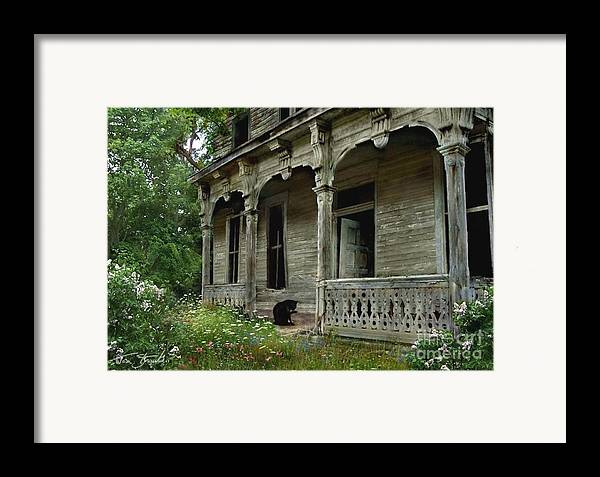 Haunted House Framed Print featuring the photograph Cat House 2 by Tom Straub