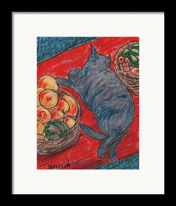 Cat Framed Print featuring the painting Cat Nap by Todd Peterson