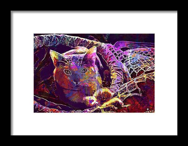 Cat Framed Print featuring the digital art Cat Purr Kitten Pet Fur Feline by PixBreak Art