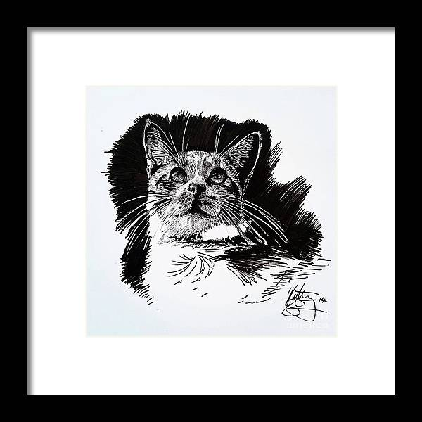 Ink Framed Print featuring the drawing Cat With Ink by Kirsten Slaney