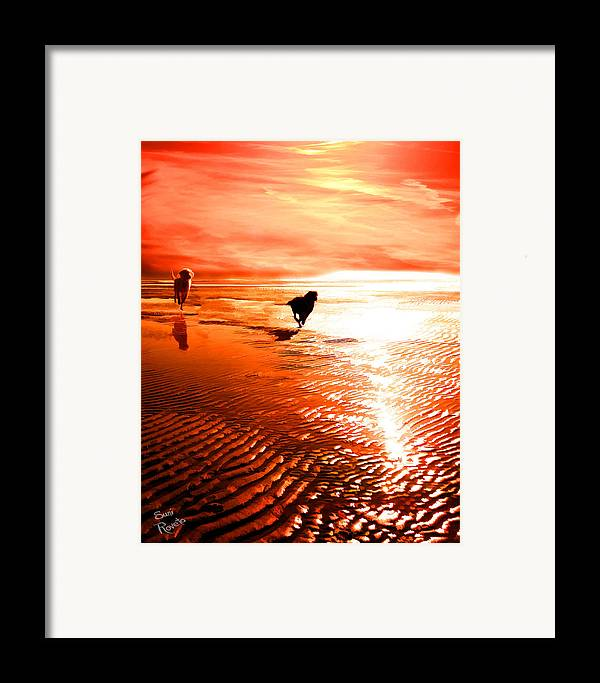 Dog Framed Print featuring the painting Catch Me If You Can by Suni Roveto