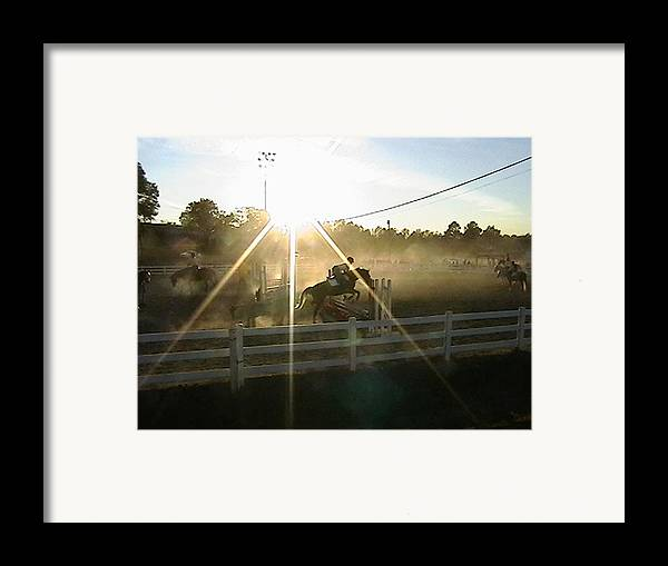 Horse Framed Print featuring the photograph Catching The Light by Donna Thomas