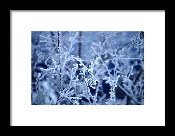Landscape Framed Print featuring the photograph Caught In The Ice by Jennilyn Benedicto