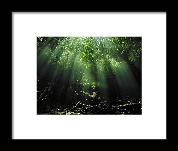 Scuba Framed Print featuring the photograph Cave Diving In Mexico by Christine Till