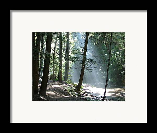 Photo Framed Print featuring the photograph Cedar Falls by Mindy Newman