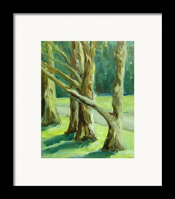 Trees Framed Print featuring the painting Cedars In Woodward Park by Linda Vespasian