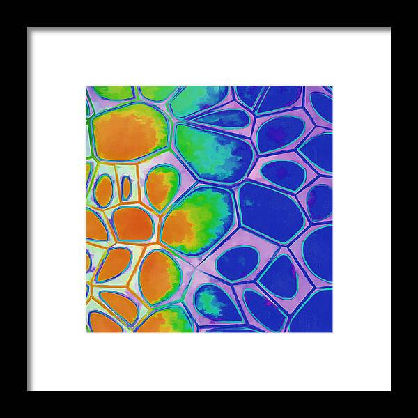 Painting Framed Print featuring the painting Cell Abstract 2 by Edward Fielding