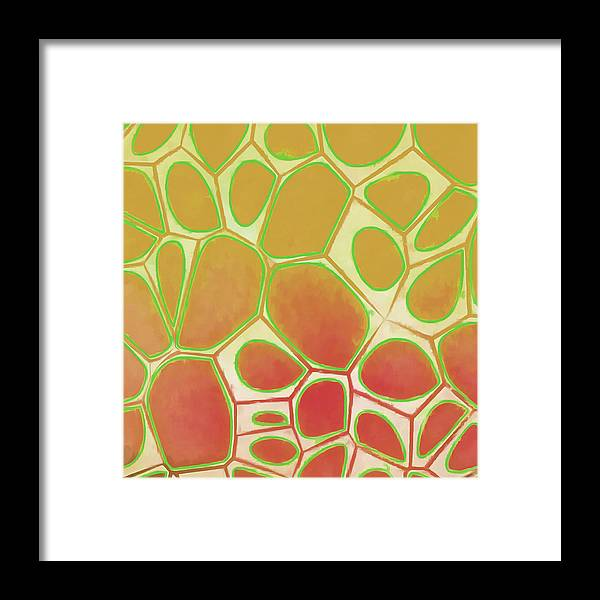 Painting Framed Print featuring the painting Cells Abstract Five by Edward Fielding
