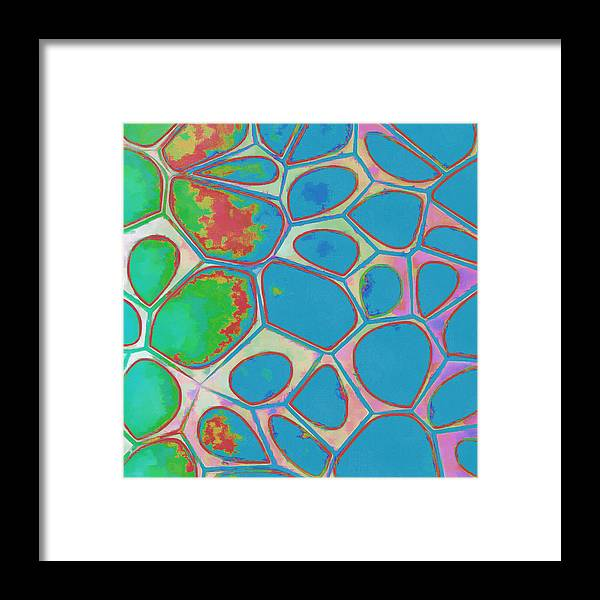 Painting Framed Print featuring the photograph Cells Abstract Three by Edward Fielding