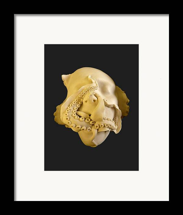 Porcelain Framed Print featuring the ceramic art 'cephalophilia' by Ruth Power