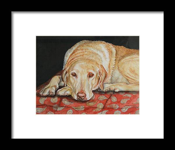 Yellow Lab Framed Print featuring the painting Chamois by Ayal Armon