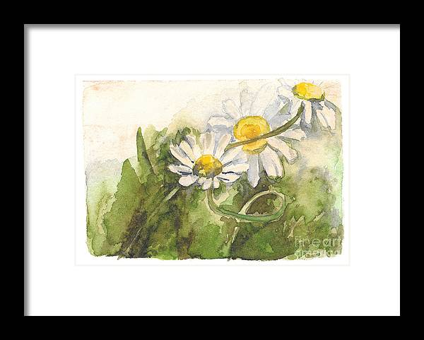 Chamomile Framed Print featuring the painting Chamomile by Yana Sadykova