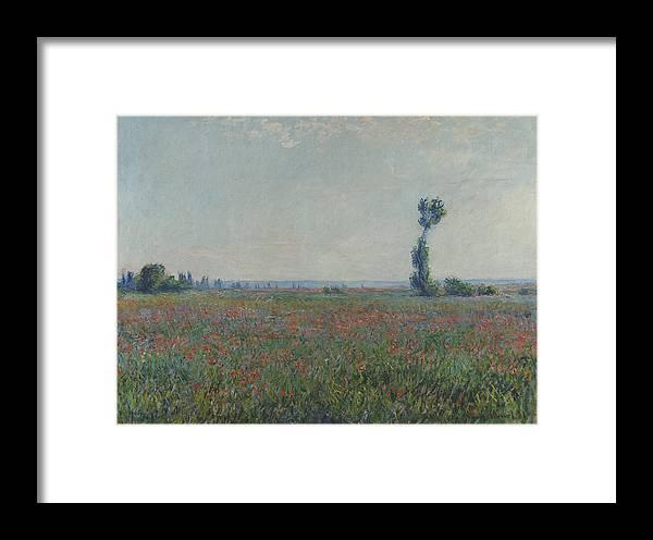 Champ De Coquelicots 1881 Framed Print by Claude Monet