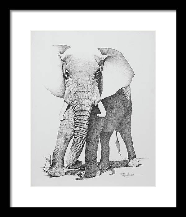 Charging Elephant Framed Print by Mary Dove