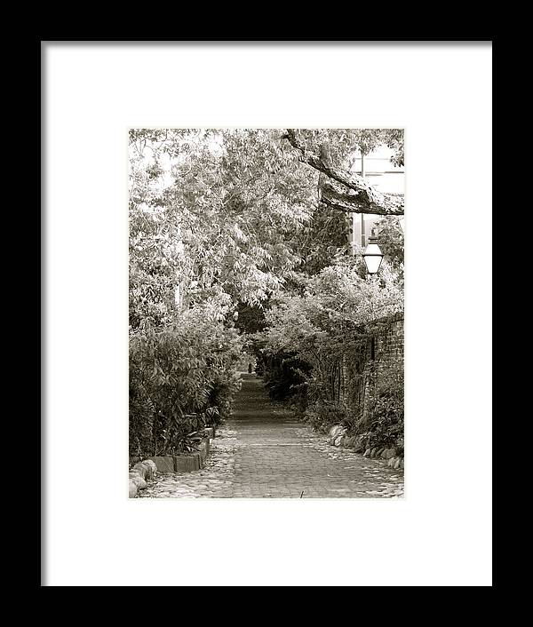 South Carolina Framed Print featuring the photograph Charleston Alley by Staci-Jill Burnley