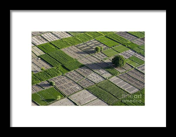 Field Framed Print featuring the photograph Checker Board Fields by Tim Grams
