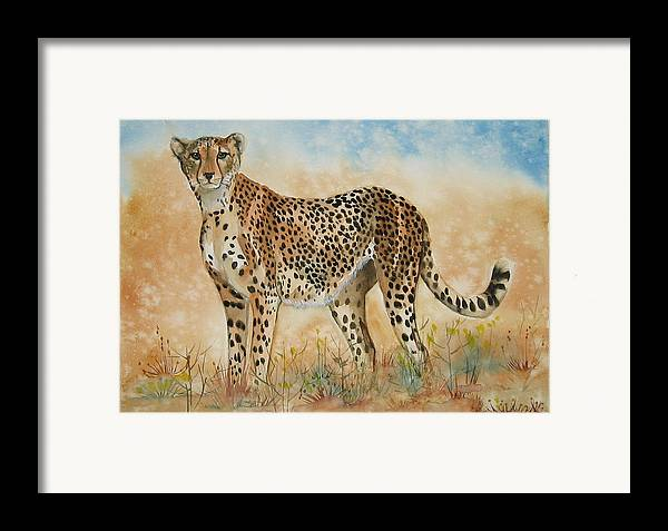 Cheetah Framed Print featuring the painting Cheetah by Gina Hall