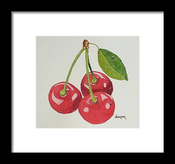 Cherry Framed Print featuring the painting Cherry Times Three by Sheila Walker
