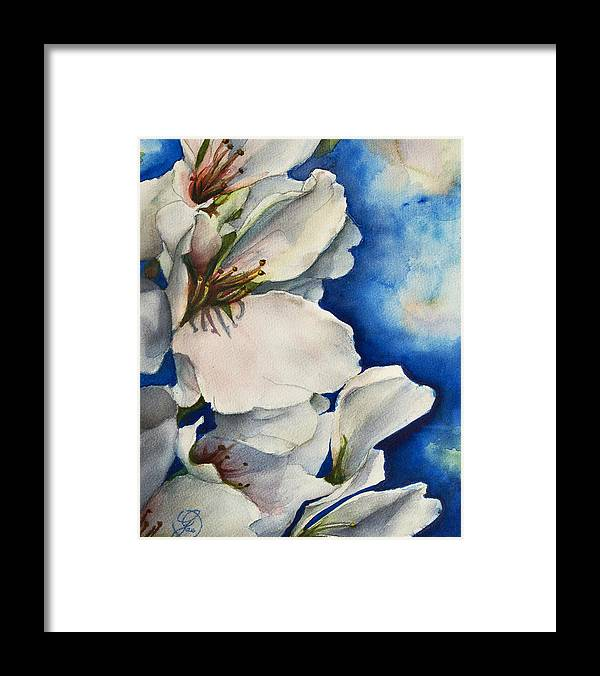 Cherry Framed Print featuring the painting Cherry Blossoms by Gae Helton