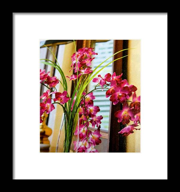 Flowers Framed Print featuring the photograph Chester House Flowers by Lord Frederick Lyle Morris - Disabled Veteran