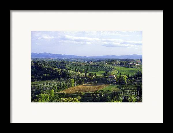 Chianti Framed Print featuring the photograph Chianti Region In Italy by Gregory Ochocki and Photo Researchers