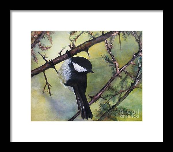 Chickadee Framed Print featuring the painting Chickadee Autumn by Sibby S