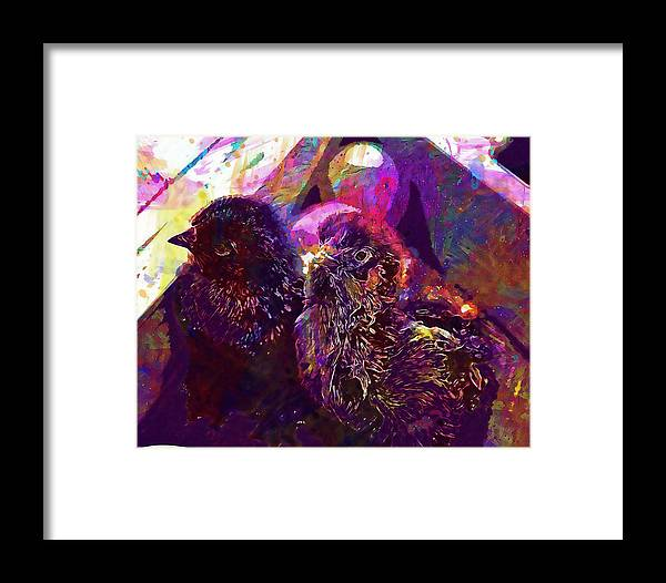 Chicks Framed Print featuring the digital art Chicks Hatched Fluffy Young Animal by PixBreak Art