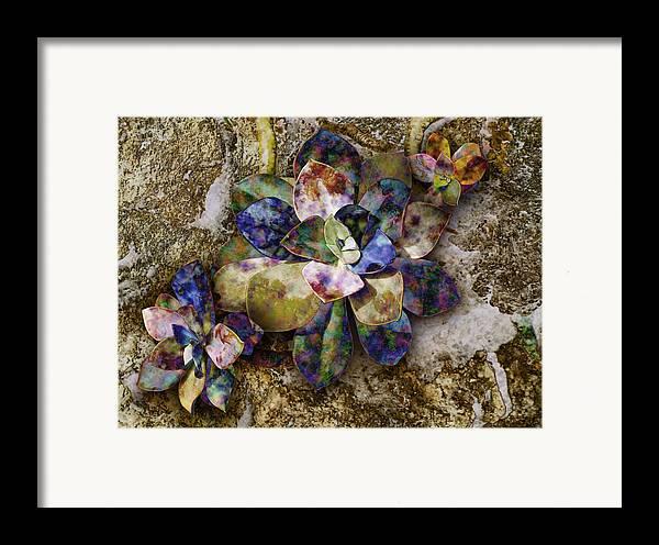Plant Framed Print featuring the digital art Chicks N Hen by Gae Helton