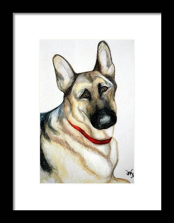 German Shepherd Pet Potraits Framed Print featuring the painting Chief by Debra Sandstrom
