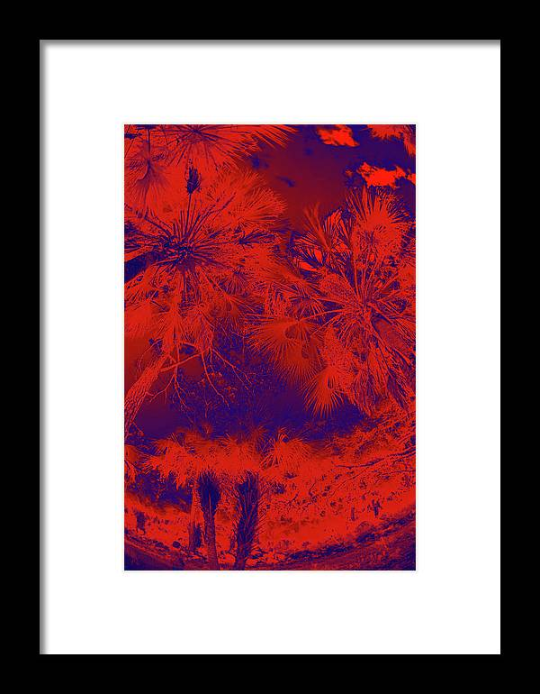 Trees Framed Print featuring the photograph Children 4 by Gary Bartoloni