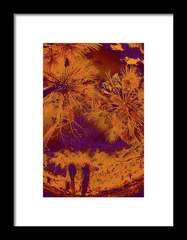Trees Framed Print featuring the photograph Children 5 by Gary Bartoloni
