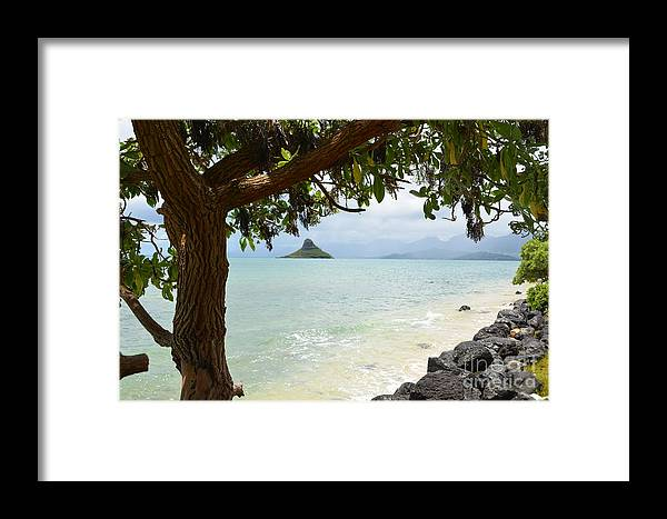 Chinaman's Hat Framed Print featuring the photograph Chinaman's Hat by Randy Edwards